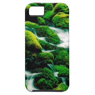 River Clear Falls Umpqua Forest Oregon iPhone 5/5S Cases