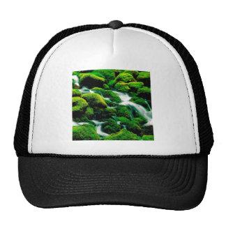 River Clear Falls Umpqua Forest Oregon Mesh Hat