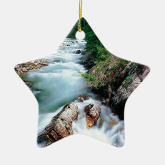River Crystal Gunnison Forest Colorado Ceramic Ornament