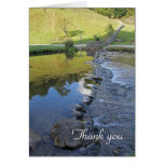River Dove thank you card