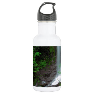 River Ethereal Mount Rainier Stainless Steel Water Bottle