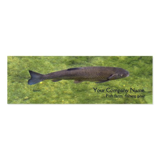 River fish business card
