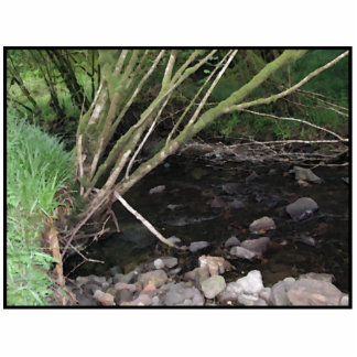 River flowing through woodland. photo sculpture button