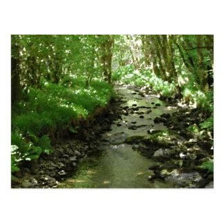 River flowing through woodland. postcard