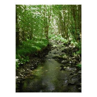 River flowing through woodland. poster