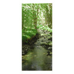 River flowing through woodland. full color rack card