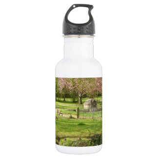 River front pink flowers of prunus in a park stainless steel water bottle