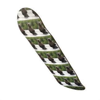 River Grizzly Board Skateboards