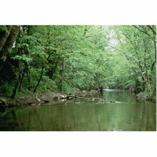 River Habitat, Kentucky Photo Cutouts