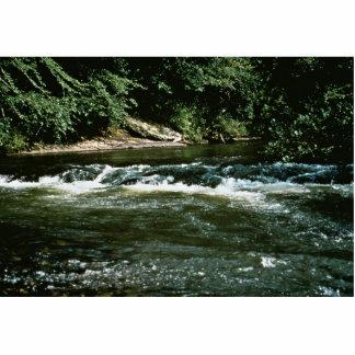 River Habitat Photo Cutout