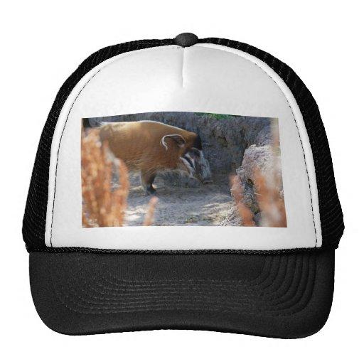 River Hog Trucker Hat