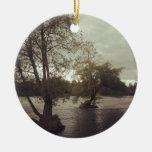 River in Eugene, OR Christmas Ornament