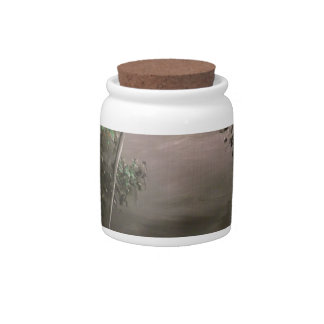 River in Mist Candy Jar