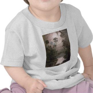 River in Mist T Shirt
