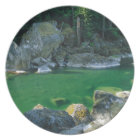 River in North Cascade National Park Dinner Plate