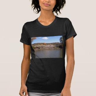 river m T-Shirt