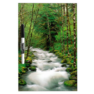 River Mckenzie Willamette Forest Oregon Dry-Erase Board