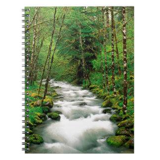 River Mckenzie Willamette Forest Oregon Notebooks