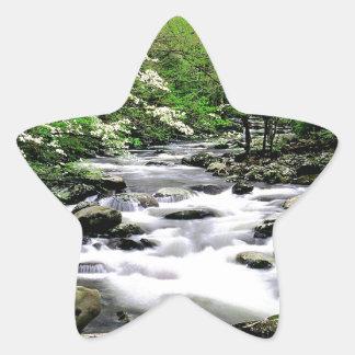 River Middle Prongdogwoods Smoky Tennesse Star Sticker