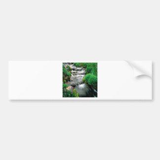 River Mount Adams Yakima Indian Reservation Car Bumper Sticker