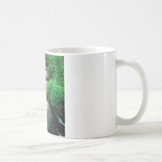 River Mount Adams Yakima Indian Reservation Coffee Mug