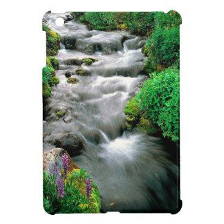 River Mount Adams Yakima Indian Reservation Case For The iPad Mini