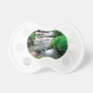 River Mount Adams Yakima Indian Reservation Pacifier