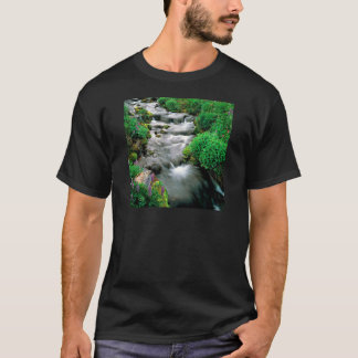 River Mount Adams Yakima Indian Reservation T-Shirt