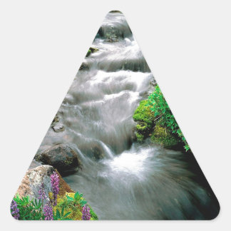 River Mount Adams Yakima Indian Reservation Triangle Sticker