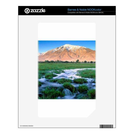 River Mount Tom Owens Valley East Sierra Decals For NOOK Color
