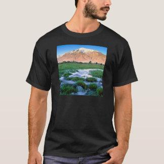 River Mount Tom Owens Valley East Sierra T-Shirt