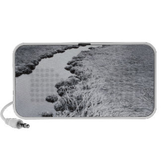 River Near Forest 2 Travel Speakers