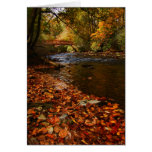 River of Leaves Stationery Note Card