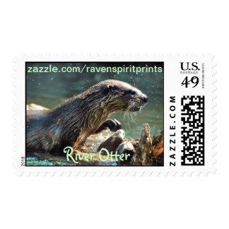 River Otter Animal-lover s Wildlife Photo Postage