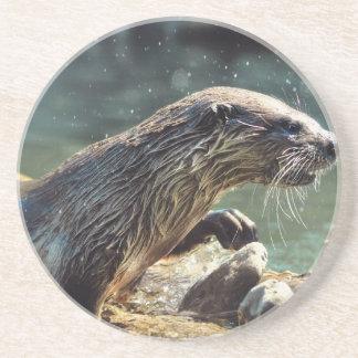 River Otter Animal-lover's Wildlife Photo Drink Coaster