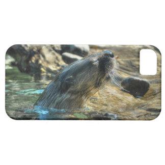 River Otter Animal-lover's Wildlife Photo iPhone SE/5/5s Case
