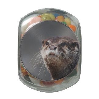 River Otter Glass Jars