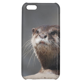 River Otter Case For iPhone 5C