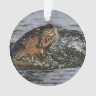River Otter Eating a Fish Ornament