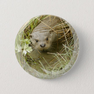 River Otter Habitat Button