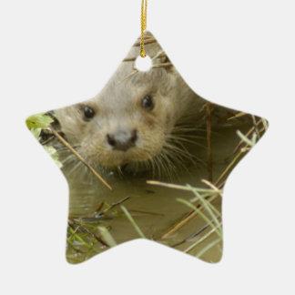 River Otter Habitat Ornament