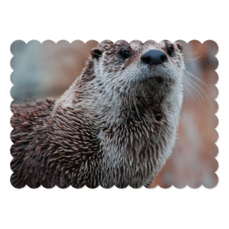 """River Otter 5"""" X 7"""" Invitation Card"""