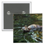 River Otter Pins