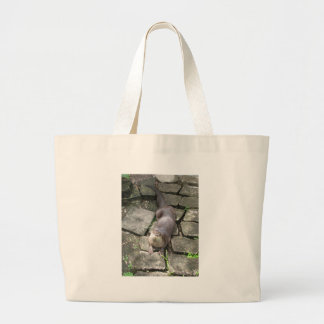 River Otter Poses Tote Bags