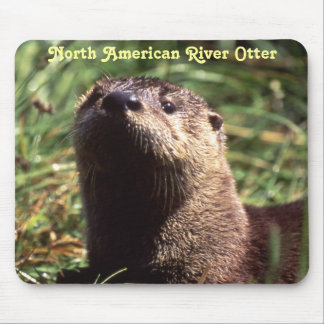 River Otter Up Close and Personal Mousepad