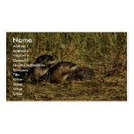 River Otters Business Card Templates