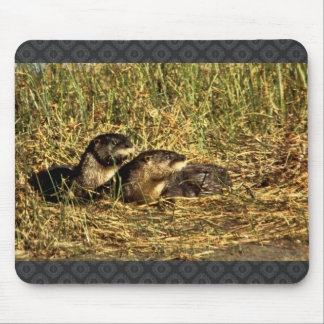 River Otters Mouse Pad