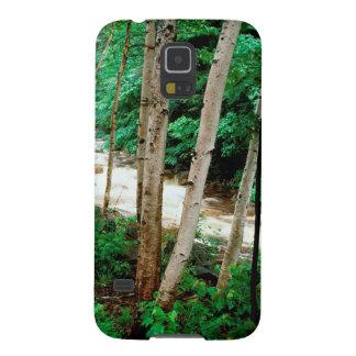 River Paper Birch White New Hampshire Galaxy Nexus Cases
