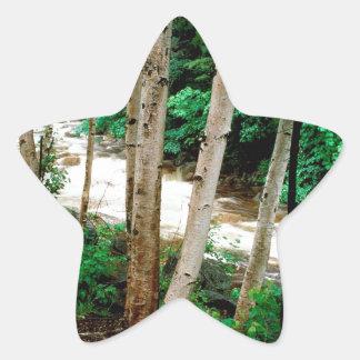 River Paper Birch White New Hampshire Stickers