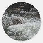 River Rapids Round Stickers
